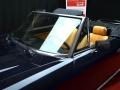 Fiat 124 Spider blu 2.0 cc - Classicheauto 2